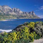 Bay around Cape Town.
