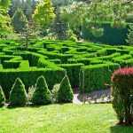 Maze at Vandusen Botanical Gardens in Vancouver.