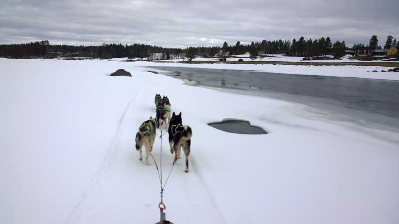 Sledding by the river in Lappland, Sweden.