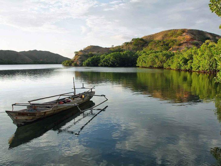 Rinca Island, Indonesia.