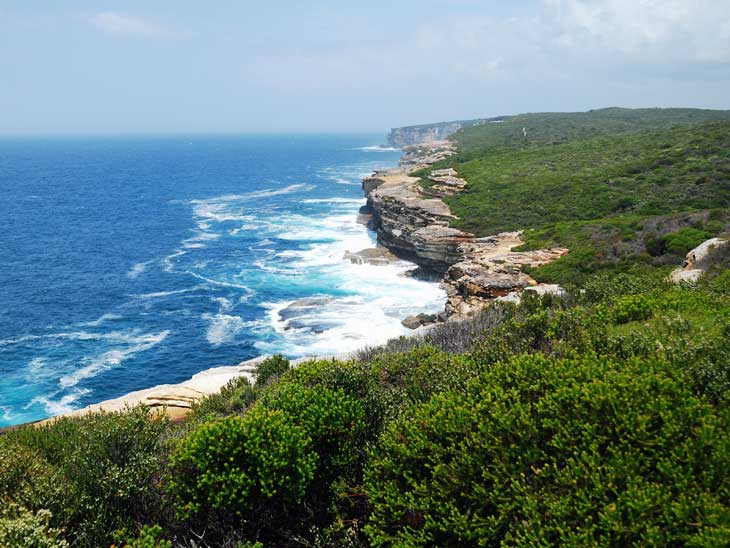sydney royal national park history list-#2