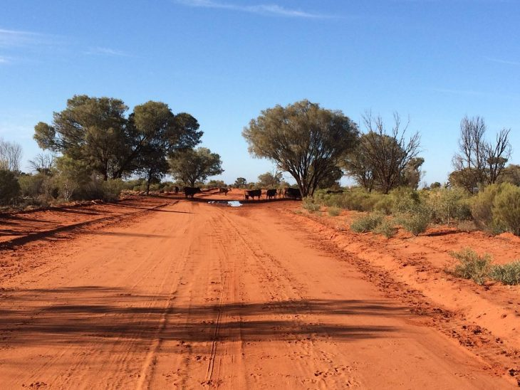 outback-931192_1280