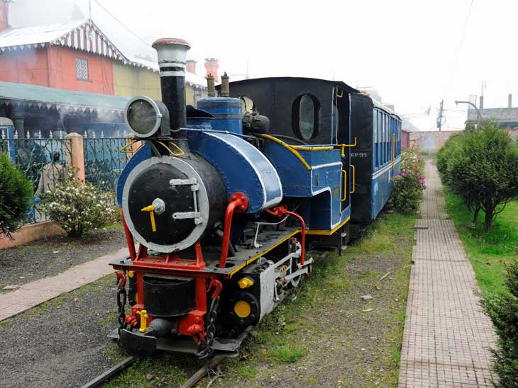The Toy Train in Darjeeling.