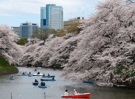 Tokyo is one of the most expensive cities in 2017.