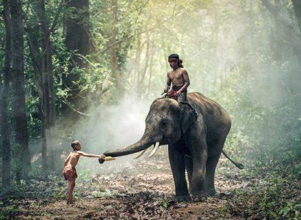 Vietnamese children riding an elephant.